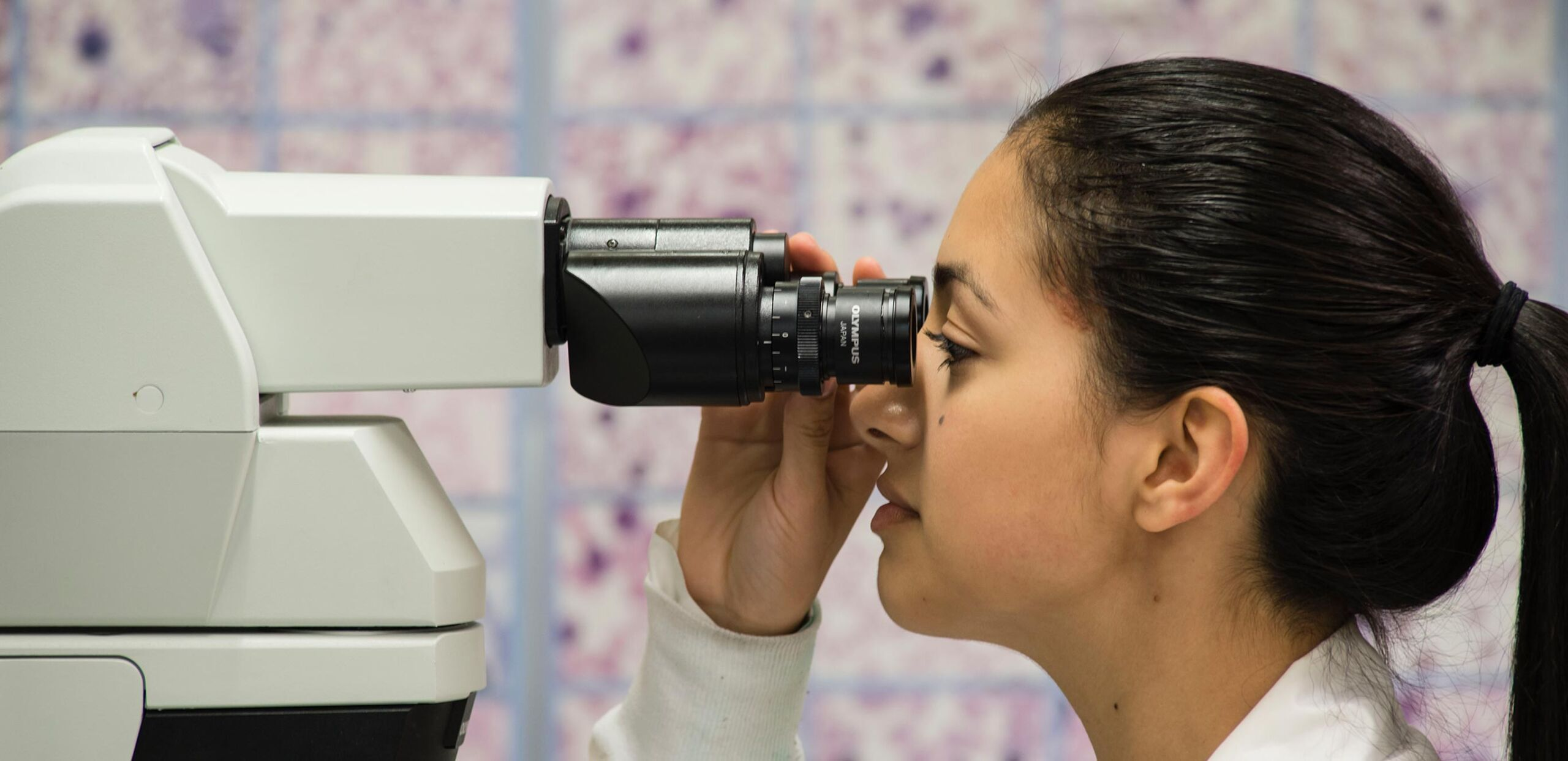 Young female scientist peers through stereo microscope, Cooley Dickinson Health Care System, Northampton, MA 01060.