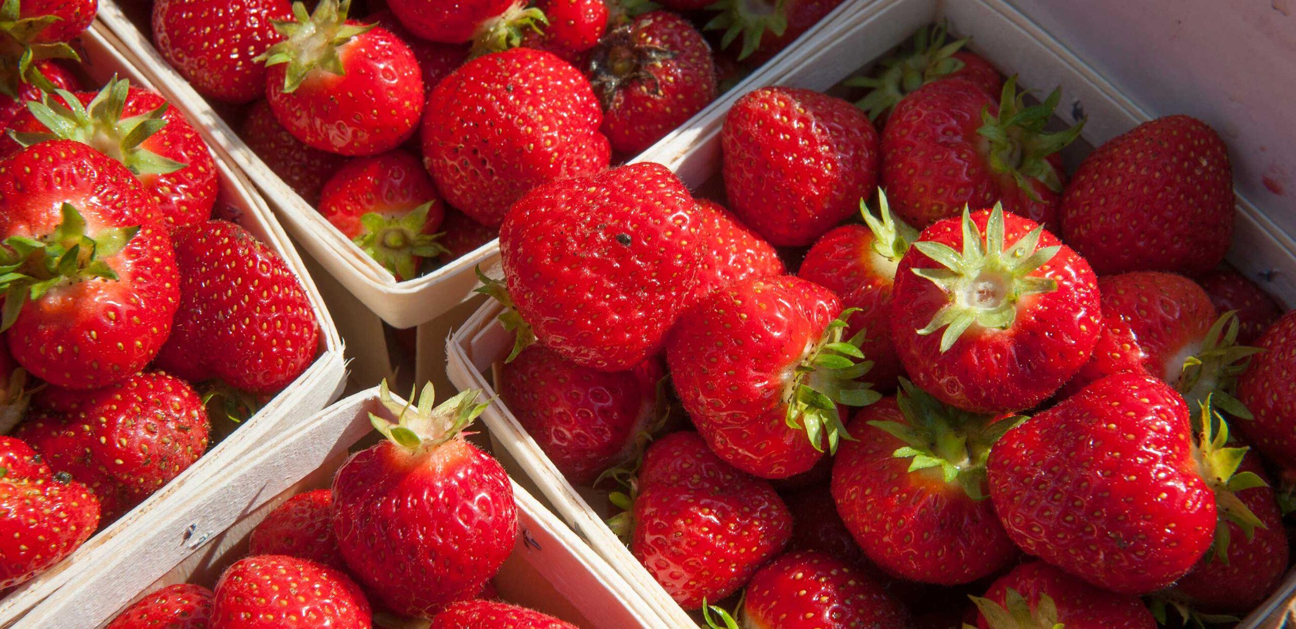 Strawberries in basket.