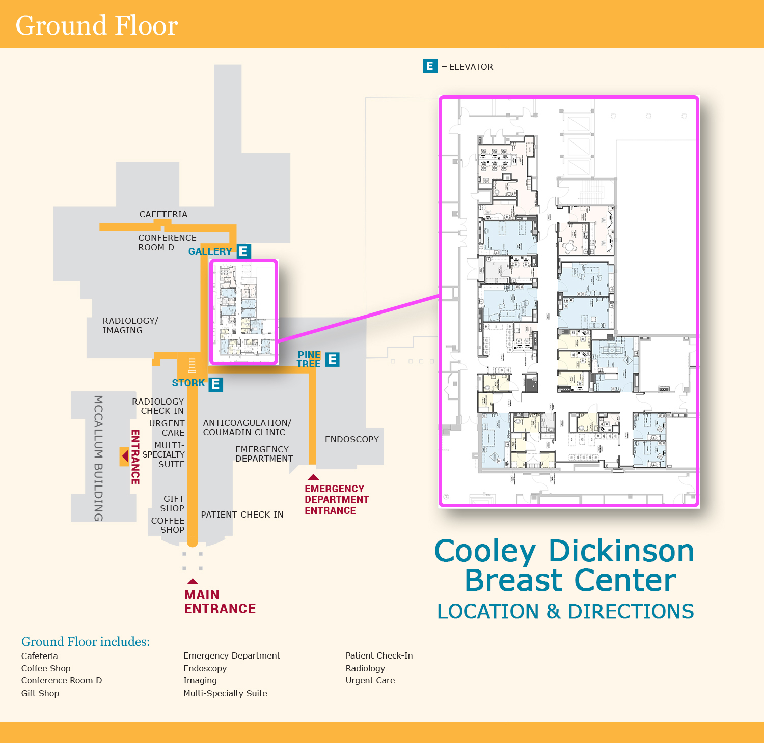 Give Comprehensive Breast Center at Cooley Dickinson Hospital