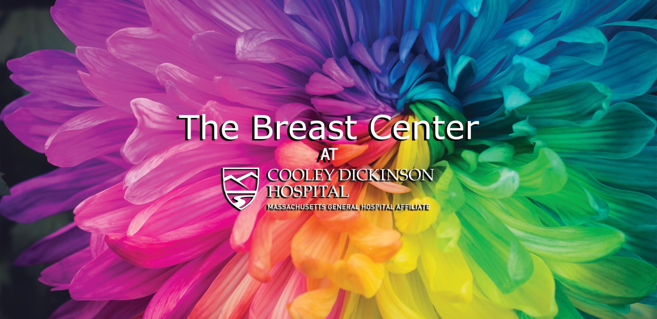 The Breast Center at Cooley Dickinson Hospital